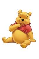Nová dobrodružství medvídka Pú