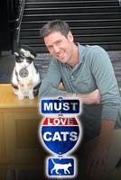 Máme rádi kočky
